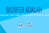 Contoh Biosfer