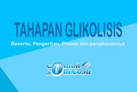 contoh glikolisis