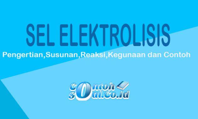 sel eletrolisis