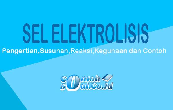 Apa yang dimaksud dengan sel elektrolis Reaksi Pada Sel ...