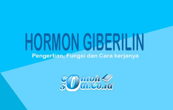 Hormon Giberilin