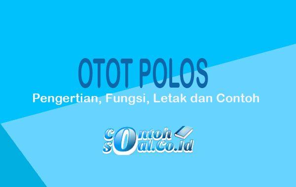 Otot Polos