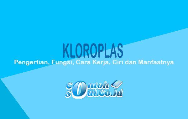 Kloroplas