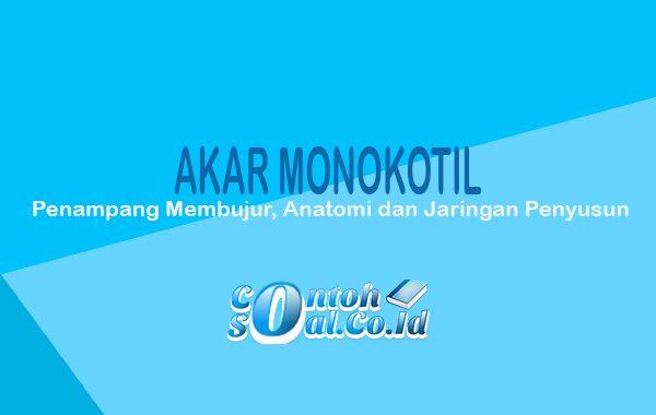 Akar Monokotil