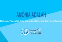 Amonia Adalah