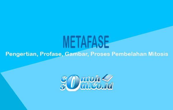 Metafase