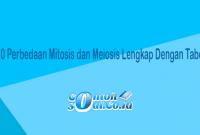 Perbedaan Mitosis dan Meiosis.png