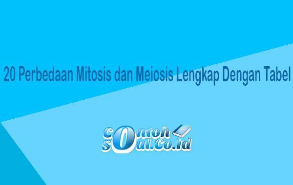 20 Perbedaan Mitosis dan Meiosis Lengkap Dengan Tabel