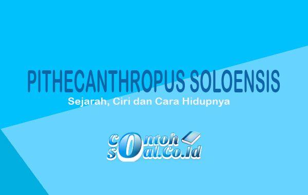 Pithecanthropus Soloensis