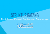 Struktur Batang