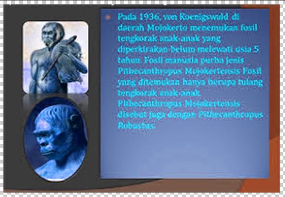 Pithecanthropus Mojokertensis Ciri Pengertian Dan Sejarahnya Update Triks12