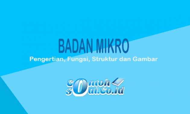 Badan Mikro