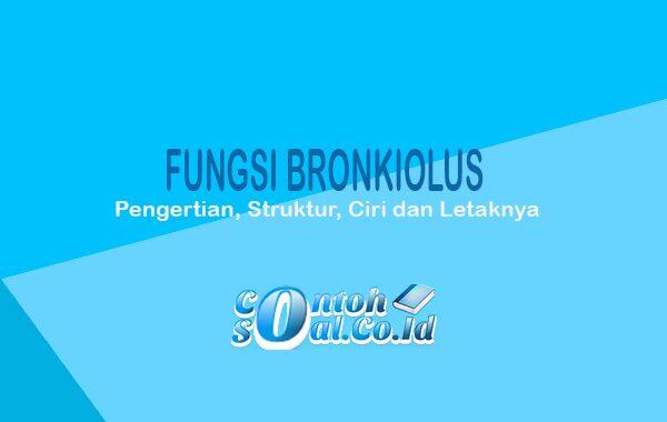 Fungsi Bronkiolus