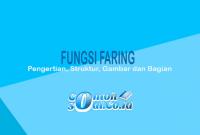Fungsi-Faring