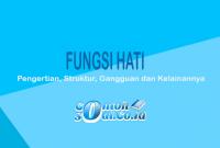 Fungsi-Hati