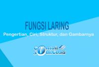 Fungsi Laring