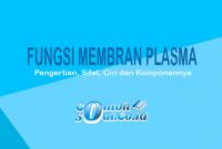 Fungsi-Membran-Plasma