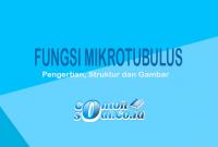 Fungsi-Mikrotubulus