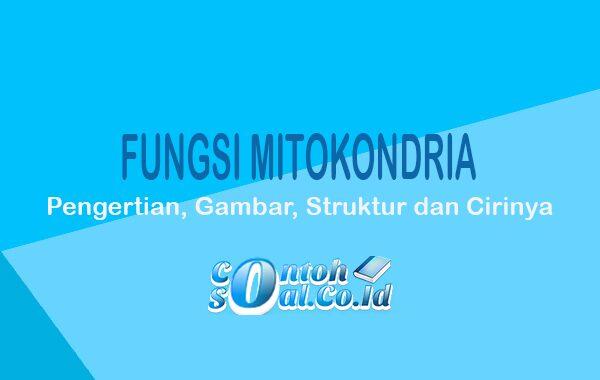 Fungsi-Mitokondria