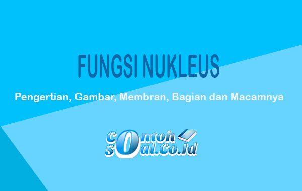 Fungsi-Nukleus