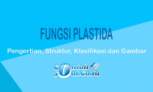 Fungsi-Plastida