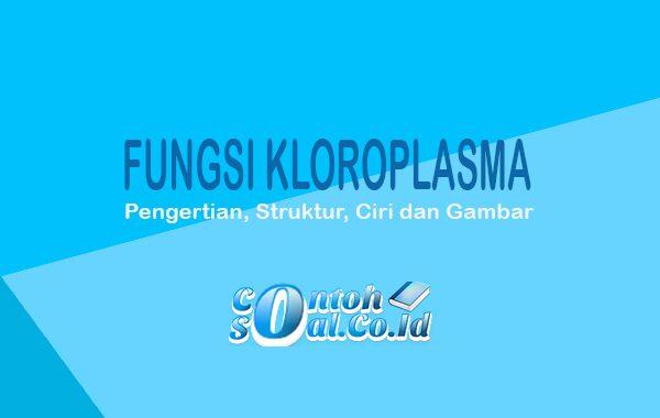 Fungsi Kloroplasma