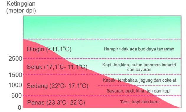 Iklim Menurut Junghuhn