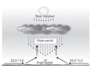 Hujan zenithal
