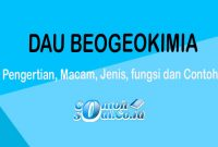 Daur Beogeokimia