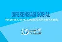 Diferensiasi Sosial