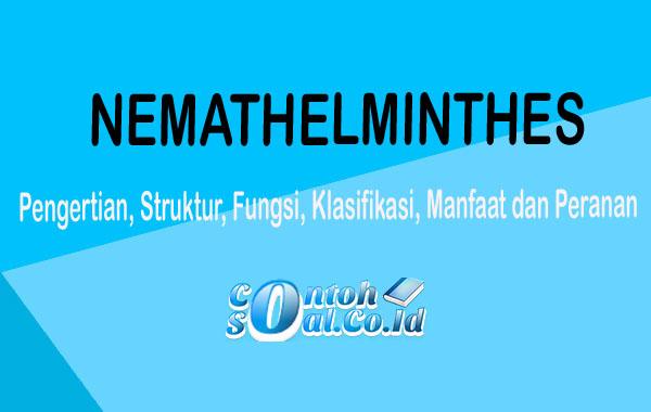 conteh dan nemathelminthes peranan
