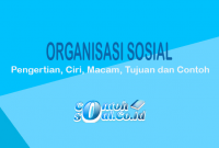 Organisasi Sosial