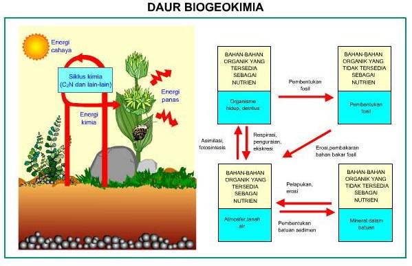 Gambar Beogeokimia