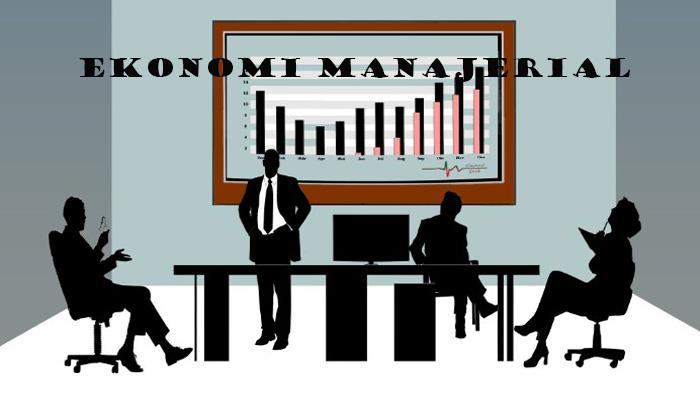 Definisi Ekonomi Manajerial
