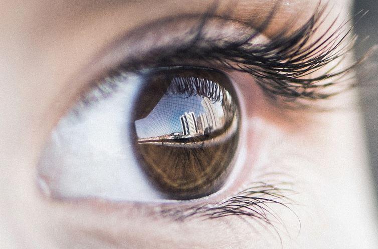 Alat Optik Adalah