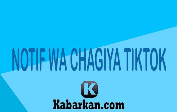 Notif WA Chagiya Tiktok