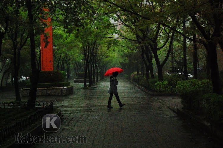 Tafsir Mimpi Melihat Hujan Deras Menurut Bang Bona