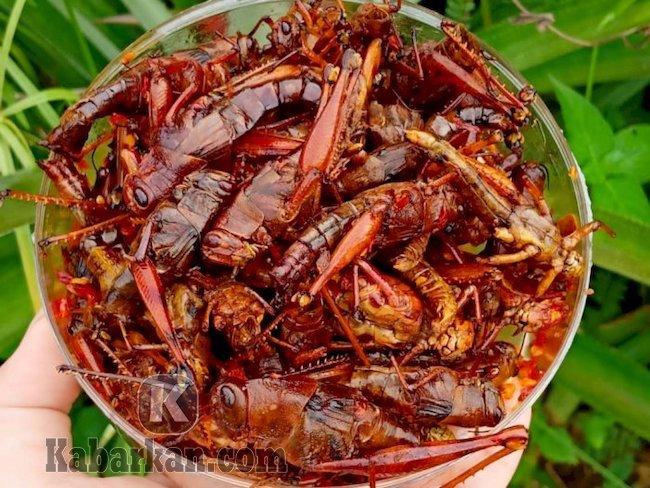 Tafsir makan belalang goreng