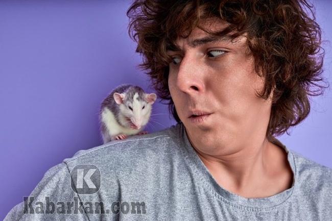 Tafsir melihat tikus masuk ke pakaian sendiri